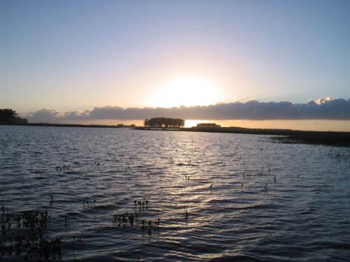 lagoa